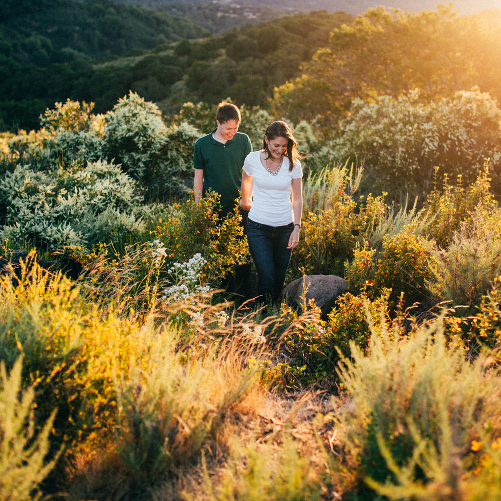 Couple in love holding hands through a field of flowers.